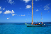 Sailboat Ocean Photos - Blue Sailing by Perry Webster