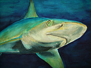 Sharks Paintings - Blue Shark by Jennifer Belote