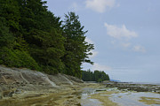 Port Renfrew Prints - Blue Skies at Botanical Beach Print by Marilyn Wilson