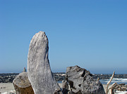 Blue Sky Coastal Landscape Driftwood Rock Pier Print by Baslee Troutman Nature Photography