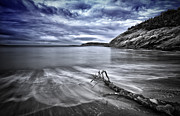Driftwood Prints - Blue sky ... High tide Print by Chad Tracy