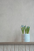 The Hague Prints - Blue Spikes In Flowerpot Print by Ingrid Kremers