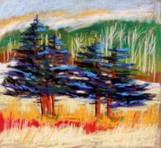 Tranquil Pastels Posters - Blue Spruce Stand Poster by John  Williams