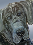 Great Dane Digital Art - Blue Study  by Ania M Milo