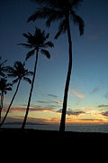 Kamaole Beach Art - Blue sunset and palm trees by Ivan SABO