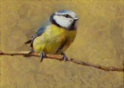 Perched Mixed Media Posters - Blue Tit Poster by Gael Keevil