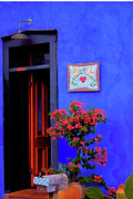 Terry Medaris - Blue Wall Red Door