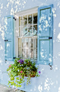 Rainbow Row Framed Prints - Blue Window Box Framed Print by Drew Castelhano