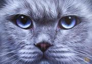 Feline Paintings - Blue by Elena Kolotusha