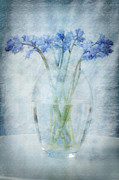 Layers Framed Prints - Bluebells Framed Print by Marion Galt