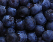 Blueberries Prints - Blueberries Close-Up - Horizontal Print by Carol Groenen