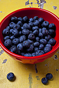 Yellow Photos - Blueberries in red bowl by Garry Gay
