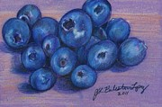 Food And Beverage Drawings Posters - Blueberries Poster by Jamey Balester