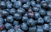Michael Sweet Metal Prints - Blueberries Metal Print by Michael Waters