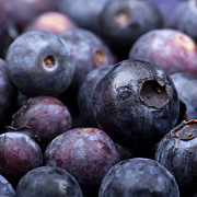 Food And Beverage Photos - Blueberry background by Jane Rix