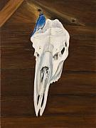 Bluebird Painting Originals - Bluebird and Skull Vanitas by Julie Kreutzer