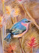 Bluebird Pastels Framed Prints - Bluebird Framed Print by Emily Michaud