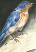 Bluebird Painting Originals - Bluebird by Linda  Lindall