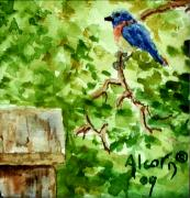 Bluebird Painting Originals - Bluebird by Scott Alcorn