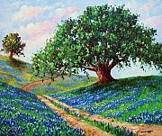 Oak Tree Paintings - Bluebonnet Road by David G Paul