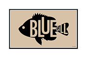 Bluegill Framed Prints - Bluegill Framed Print by Geoff Strehlow