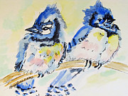 Mary Jo Beranek - Bluejay