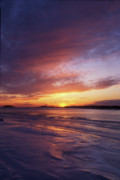 Connecticut Prints - Bluff Point State Park Winter Sunset Print by John Burk