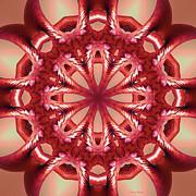 Deborah Benoit - Blushing Flower Kaleid