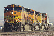 Bnsf Framed Prints - BNSF Freight Train Framed Print by Richard R Hansen and Photo Researchers