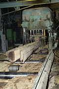 Sawmill Prints - Boards Being Cut At A Sawmill Print by Ria Novosti