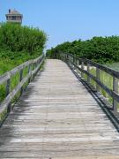 Boardwalk Print by Colleen Kammerer