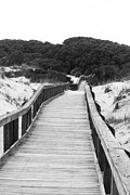 Tanya Chesnell Metal Prints - Boardwalk Metal Print by Tanya Chesnell