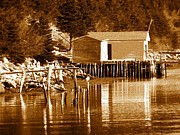 Shed Digital Art Posters - Boat House Poster by Barbara Griffin