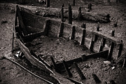 Wreck Metal Prints - Boat Remains Metal Print by Carlos Caetano