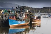 Water Vessels Posters - Boats Docked In Tobermory, Isle Of Poster by John Short