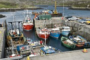 Trawler Metal Prints - Boats In A Harbour Metal Print by Adrian Bicker