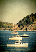 Maine Shore Framed Prints - Boats in Bar Harbor Framed Print by Jill Battaglia