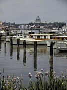 Annapolis Maryland Posters - Boats Line The Docks Of Annapolis Poster by W. Robert Moore