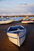 Row Boat Prints - Boats Moored Near The Harbor Of Print by Peter Zoeller