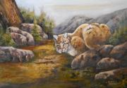 Bobcat Paintings - Bobcat by Audie Yenter