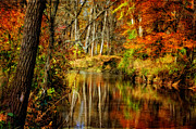 Fall Landscape Digital Art - Bobs Creek by Lois Bryan