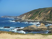 Landscape Posters Posters - Bodega Bay Headlands Poster by Paul Baker