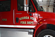 The Bird Photo Prints - Bodega Volunteer Fire Department Fire Engine . Bodega Bay . Town of Bodega . California . 7D12459 Print by Wingsdomain Art and Photography