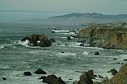 Bodega Bay Prints - Bodgea Bay Two Print by Alberta Brown Buller