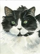 Black And White Cats Paintings - Bodhi by Kimberly Lavelle