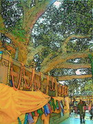 Bodhi Tree Art - Bodhi Tree by Lisa Dunn