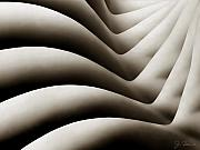 Curves Digital Art - Bodywaves by Joe Bonita
