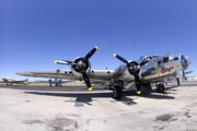 Douglas Dc-3 Framed Prints - Boeing B-17G Flying Fortress N9323Z Sentimental Journey at Falcon Field Arizona March 28 2011 Framed Print by Brian Lockett