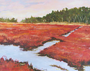 Barnstable Ma Prints - Bog Celebration Print by Alicia Drakiotes