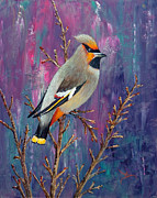 Bohemian Waxwing Print by Dee Carpenter